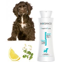 Biogance Fresh N Pure - шампоан 250 мл