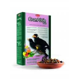 GantPatee - Fruits