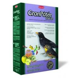 GranPatee - insectes