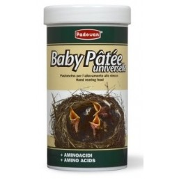 BABY PATEE