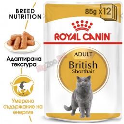 Royal Canin British Shorthair Adult 12*85гр. Пълноценна храна за котки - Специално за котки мейн куун в зряла възраст - Над 12 месеца (тънки парченца в сос).